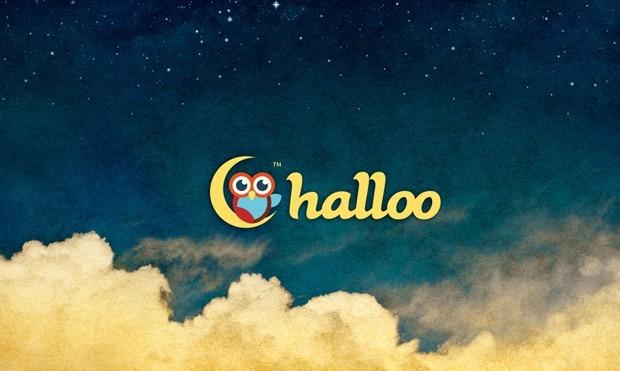 HALLOO B e1366526998331 35 Owl Logo designs For Your Inspiration