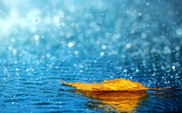257040 e1368370275716 Beautiful Rain Wallpapers For Your Desktop