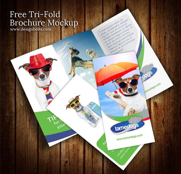 free tri fold brochure template psd - free mockups to use in your next design creatives wall