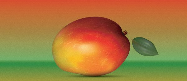How to create a Realistic Mango. Excellent Adobe Illustrator Tutorials