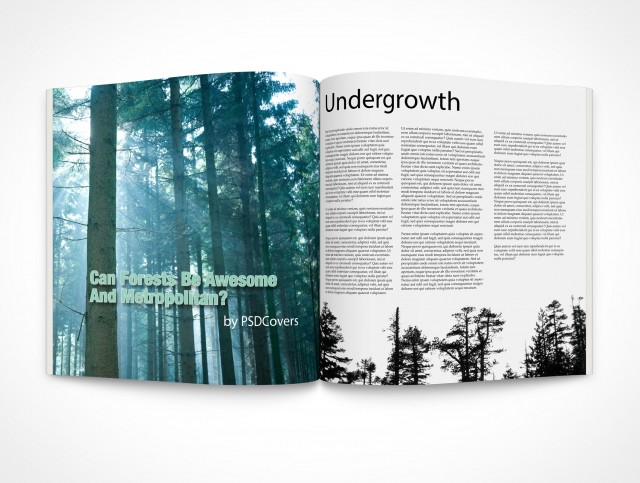 free psd book and magazine mockups