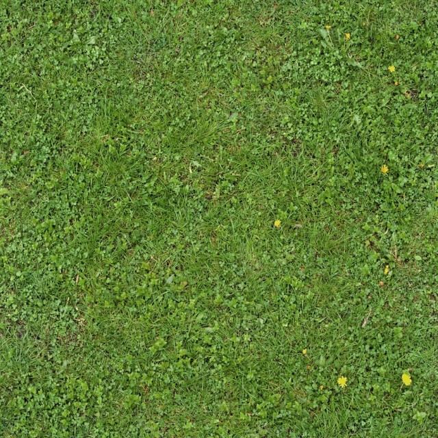 grass texture 10 e1399399340232 65+ Free High Resolution Grass Textures