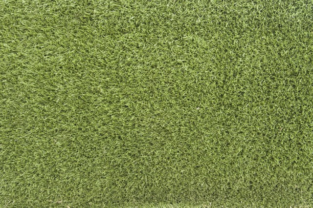 grass texture 11 e1399399433859 65+ Free High Resolution Grass Textures