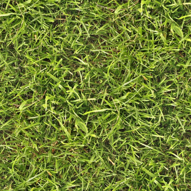 grass texture 13 e1399399710376 65+ Free High Resolution Grass Textures