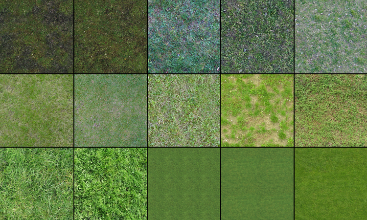 grass texture 17 65+ Free High Resolution Grass Textures