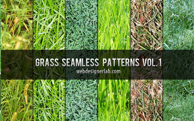 grass texture 04 65+ Free High Resolution Grass Textures