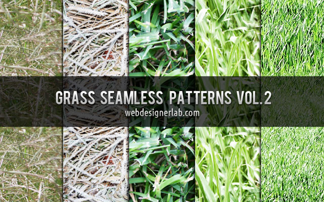 grass texture 05 65+ Free High Resolution Grass Textures