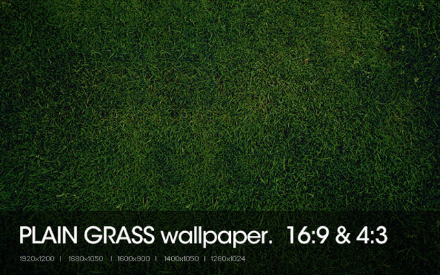 grass texture 07 65+ Free High Resolution Grass Textures